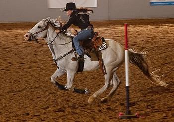 Pole Bending Championship Horse Lover S Math