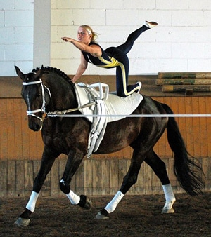 the flag position - equestrian vaulting