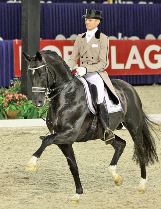 Totilas, dressage champion