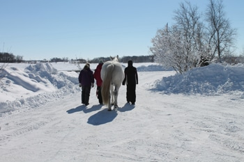 3 girls and horse