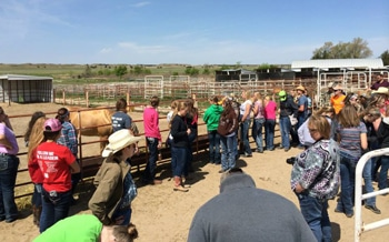 equine career tour Pitzer Ranch