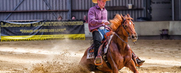 western reining sliding stop