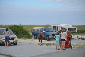 Assateague campground
