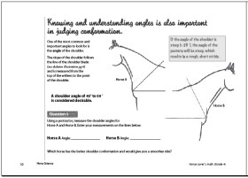 Horse Science page sample