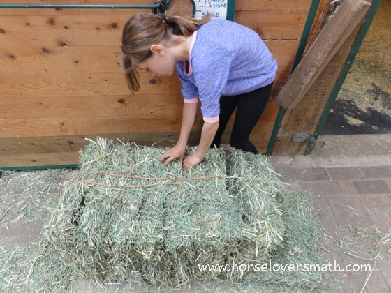 When a small square bale is open, it falls naturally into individual flakes.