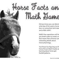 horse math game