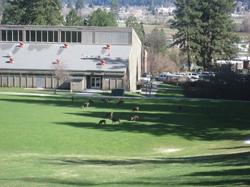 FRC ranch management campus