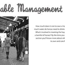 Stable Manament 2 title pg